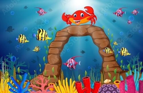 Cartoon tropical crab with beautiful underwater world