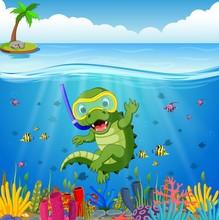 Crocodiles Snorkeling Underwat...