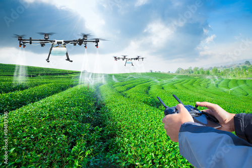 Deurstickers Groene Agriculture drone fly to sprayed fertilizer on the green tea fields, Smart farm 4.0 concept