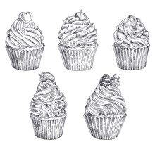 Set Of Vector Hand-drawn Cupcakes. Template For Postcard, Web Design, Menu, Cover, Advertising, Packaging, Printing. Sketch Background, Pattern, Texture, Wallpaper With Cakes