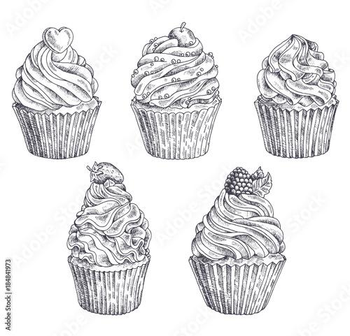 Photo  Set of vector hand-drawn cupcakes