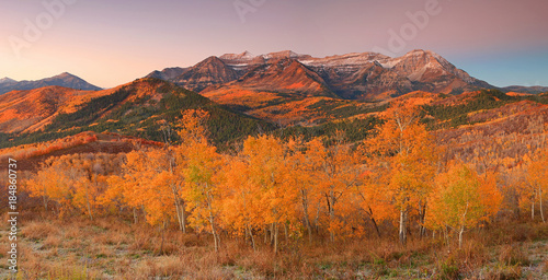 Spoed Foto op Canvas Oranje eclat Fall landscape in the Wasatch Mountains, Utah, USA.
