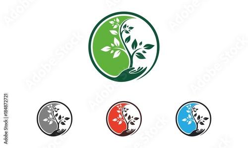 Fotografie, Obraz  Yin Yang Tree logo vector