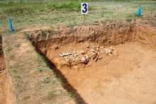Archaeological Excavations. In...