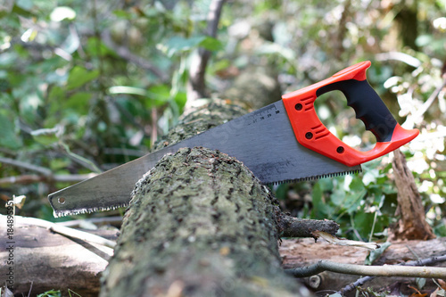 Fotografie, Obraz  Hand hacksaw on wood cutting of tree on a natural background