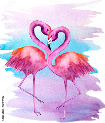 watercolor illustration of two flamingos on a colored background