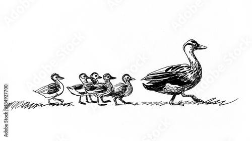 Obraz na płótnie Walking ducks