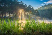Pang Ung Forestry Plantations, Maehongson Province,Thailand