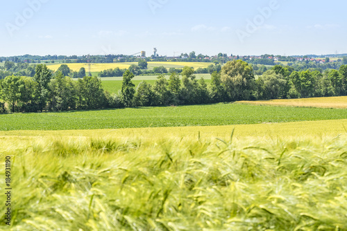 Spoed Foto op Canvas Zwavel geel rural scenery in Hohenlohe
