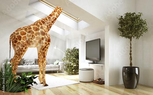 Außergewöhnliche Giraffenwohnung Wallpaper Mural