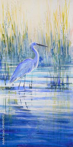 Blue heron on the lake shor...