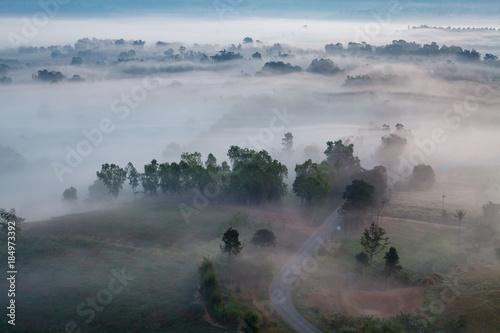 Garden Poster fog in morning sunrise and road at Khao Takhian Ngo View Point at Khao-kho Phetchabun,Thailand