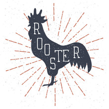 Hand Drawn Rooster Illustration With Lettering And Vintage Sunburst. Vector