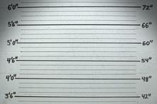 Mugshot Wall Background