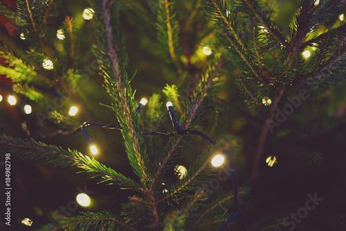 Fotografija  Lights and Christmas tree