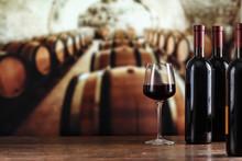 Wine Tasting. Wine Cellar With...
