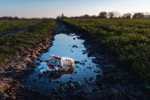 Vintage China Doll Lying In Dirt Puddle In Rural Landscape.
