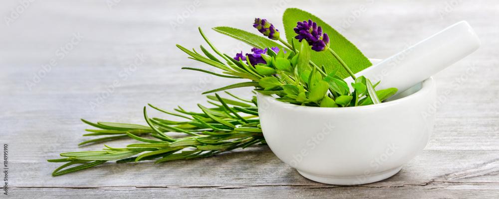 Fototapety, obrazy: Healing herbs