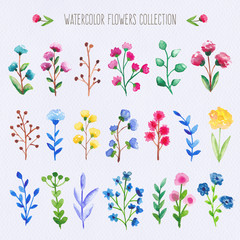 Watercolor colorful flowers set
