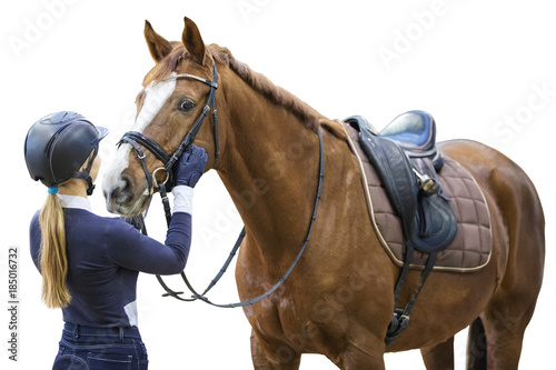 Equestrian sportsman with a horse isolated on white background.