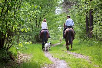 Young couple on a horseback walk with thier dogs.