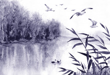 Ink Landscape With Birds And Reeds