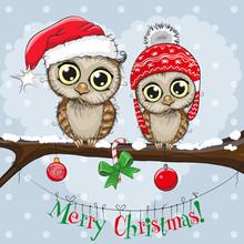 Greeting Christmas Card Two Owls