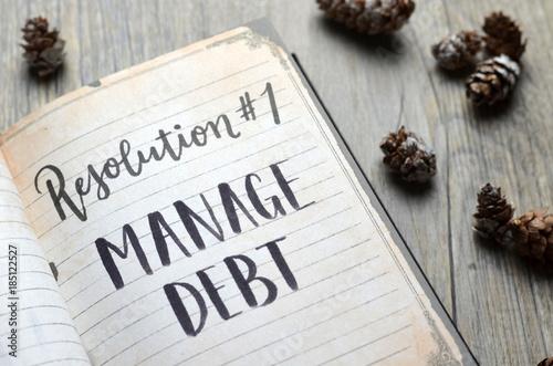 Fotografie, Obraz  Resolution No. 1 MANAGE DEBT