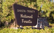 Shasta Trinity National Forest Boundary Entrance Sign California