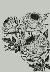 Plakat Vintage bouquet of roses