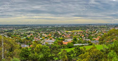 Fototapeta Rainy day in the Park Wilson.  Australia. obraz na płótnie