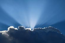 Sun Rays Peeking Through Fluff...