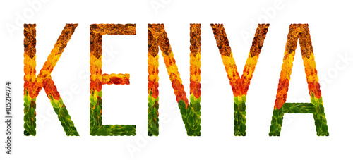 Photo word kenya country is written with leaves on a white insulated background, a ban