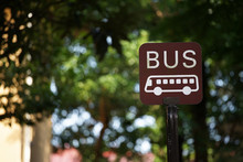Scene Of The Signboard Of The Bus Stop Among The Green Which It Was Fine