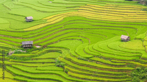 Autocollant pour porte Les champs de riz Terraced rice field in Northern Vietnam