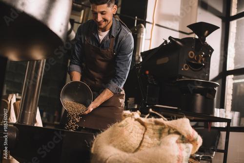 Fototapeta coffee roaster pouring coffee beans into roasting machine obraz