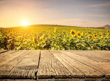 Empty Wooden Plank With Sunflo...