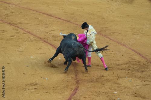 Tuinposter Stierenvechten Bullfighter spagnolo