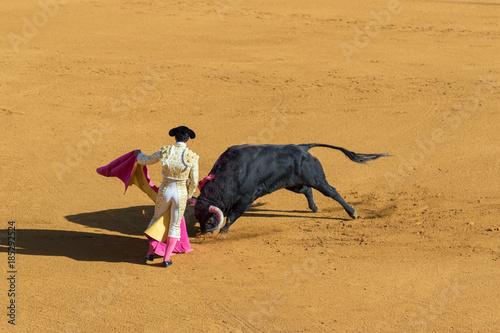 Tuinposter Stierenvechten Torero durante una corrida.