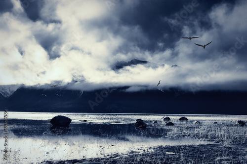 Fotografie, Obraz  Southeastern Alaska Beach Blues