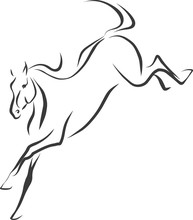 Sketch Of A Jumping Horse.