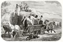 Old Illustration Of Haymaking ...