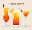 Set of Alcohol Drinks and Cocktails : Vector Illustration