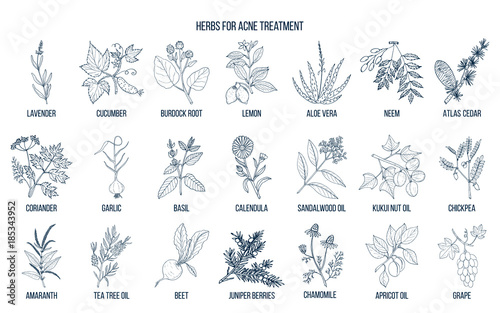 Foto  Best herbs for acne treatment