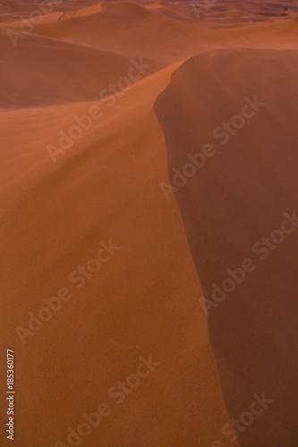 Photo  Dubai Desert