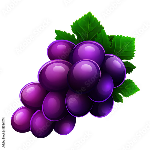 Grapes icon isolated on white background. Vector illustration Canvas Print