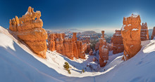 Bryce Canyon National Park Und...