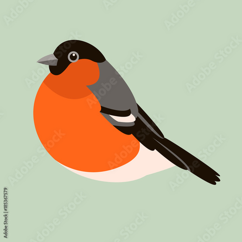 bullfinch  bird  vector illustration flat style   profile Canvas Print