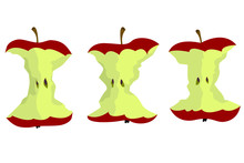Apple Core Vector Design