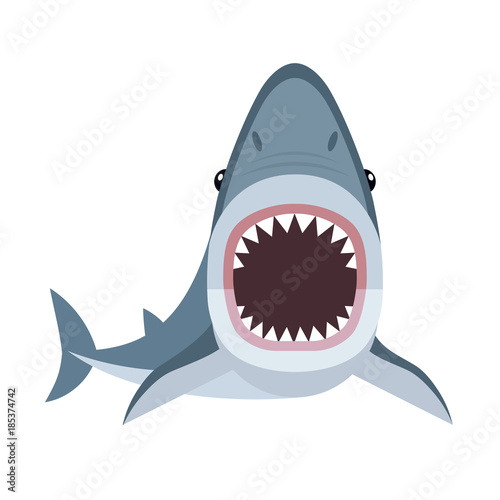 Fototapeta Vector illustration of shark with open mouth full of sharp teeth, isolated on a white background